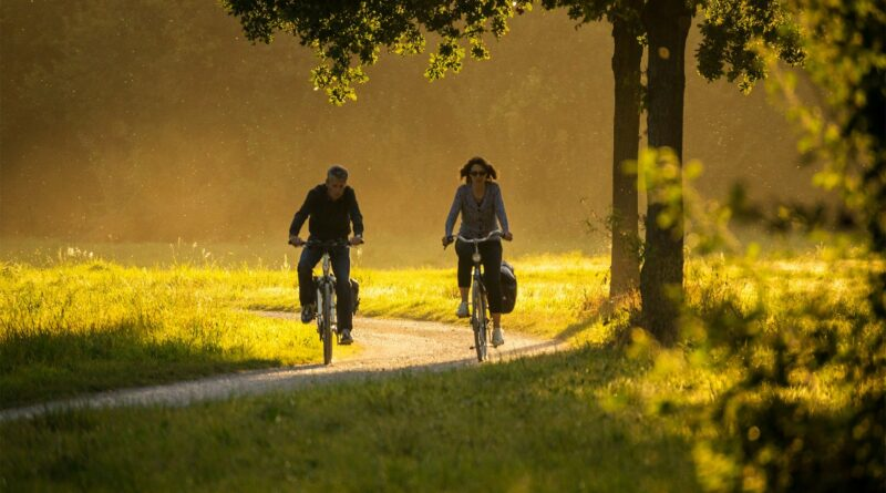 Cyklisté kolo