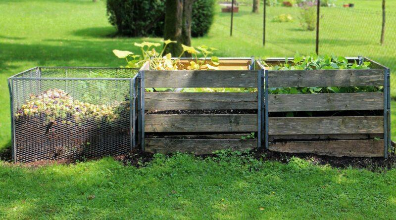 kompost-ilustracni