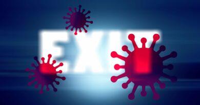 ilustracni-koronavirus
