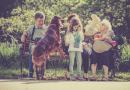 Koncepce rodinné politiky